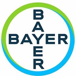 Bayer_web